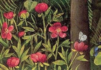 Paradiesgärtlein. Detail: Päonie