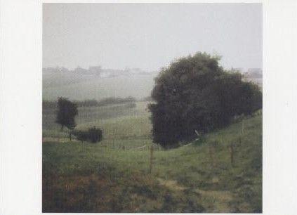 Wiesental, 1985