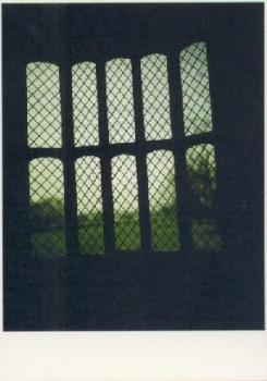Nightlight, 2004