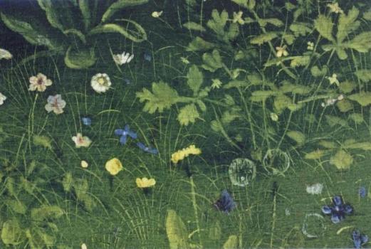 Blumenwiese, 1432