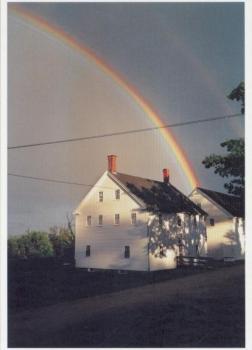 Shaker rainbow, 1998