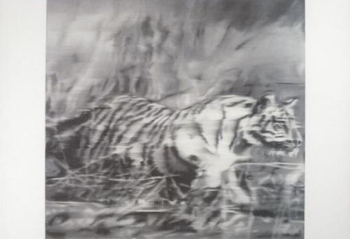 Tiger, 1965