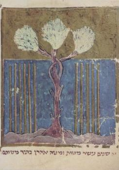 Grünender Stab Aarons, 13. Jahrhundert