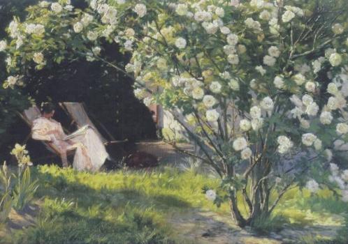 Rosengarten, 1893